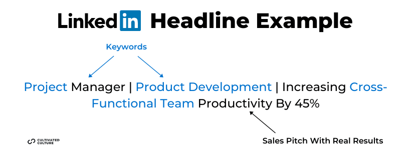 LinkedIn Headline Example Project Manager